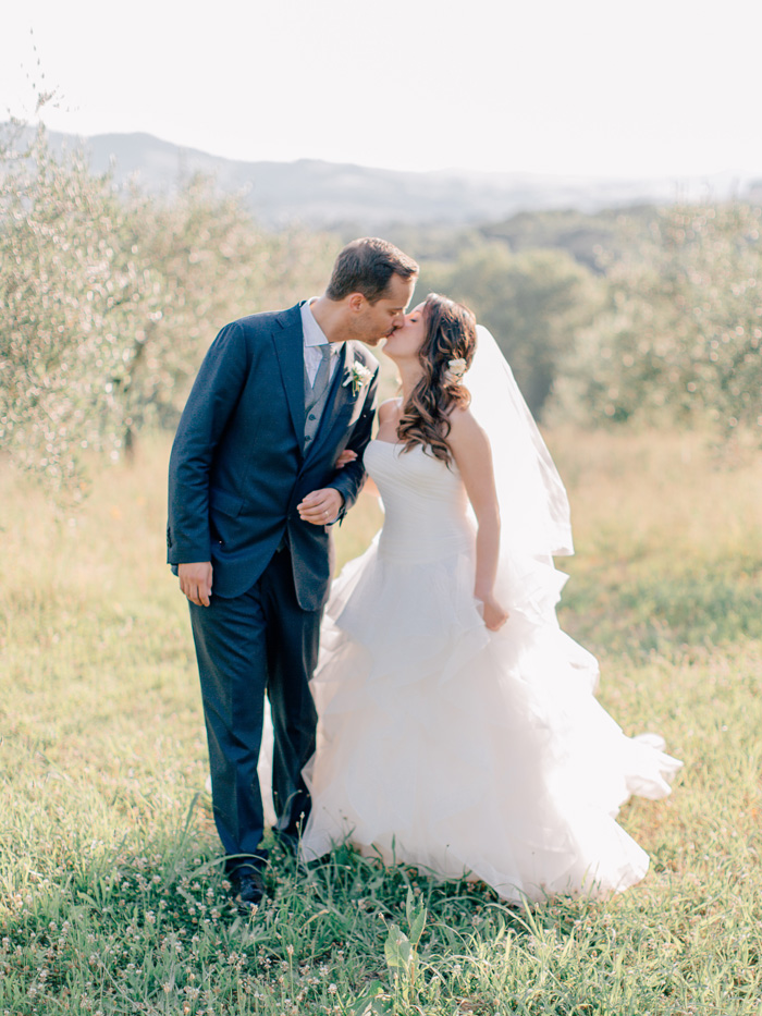 Olive trees in Italy. Destination wedding photographer.