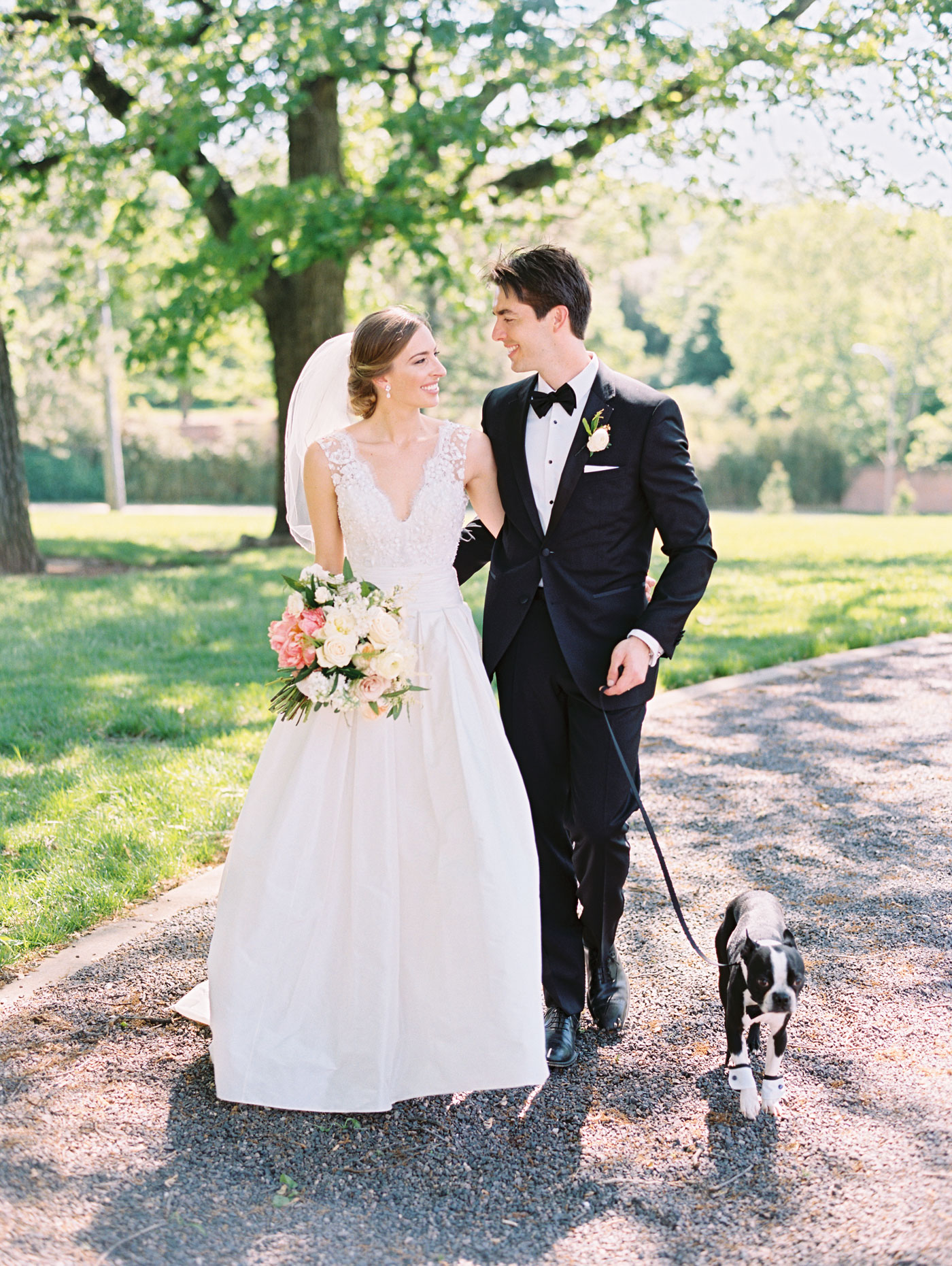 bride and groom with boston terrier