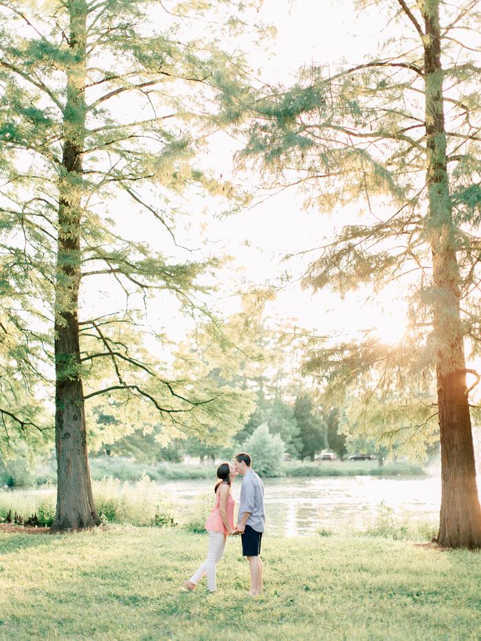 romantic walk in sunset trees