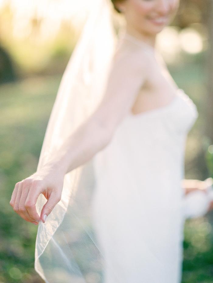 Bride's veil in sunlight